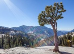 Yosemite, blue skies, sunbeams, debbie lias photography