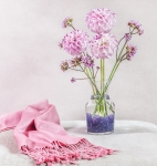 still life flowers, pastel shades, flowers, debbie lias, photography